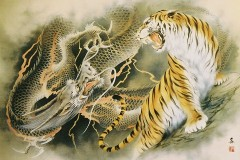 Dragon vs. tiger