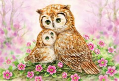 Owls cuddle