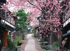 Magome post town in spring
