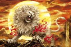 White lion roar