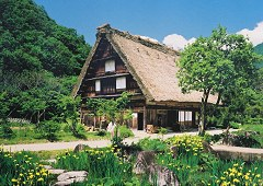 Shirakawa-go - early summer