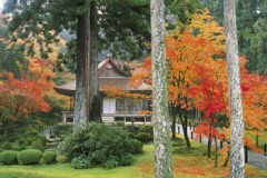 Sanzen-in autumn