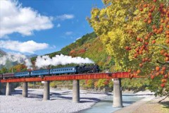 Oigawa railway in autumn