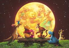 Pooh's moonlight party